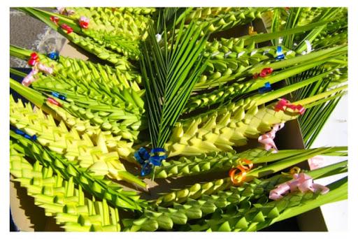 Domenica delle palme  (Cattedrale di Locri, s. Messa teletrasmessa – 4 aprile 2020)